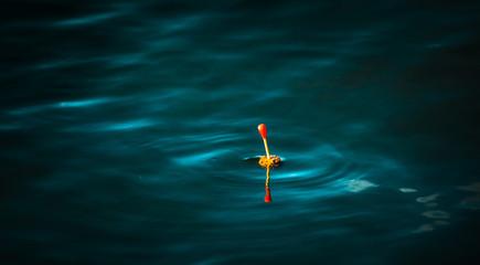 fishing at dark