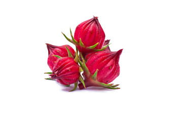 roselle fruits on white background