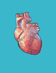 Low poly human heart illustration on blue BG