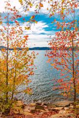 View of lake through beautiful autumn maple trees.