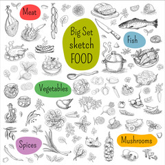 Big set of sketch drawn Food, white background. Meat, fish, vegetables, mushrooms, spices. Hand drawn vector illustration