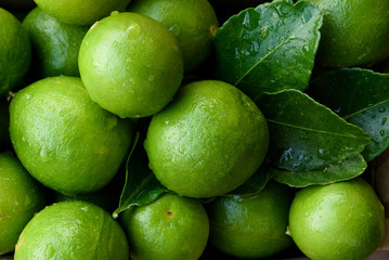 Very fresh organic lime with dew drop