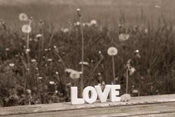 word love (55)