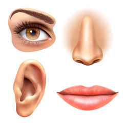 Eye Ear Lips Nose Icons Set