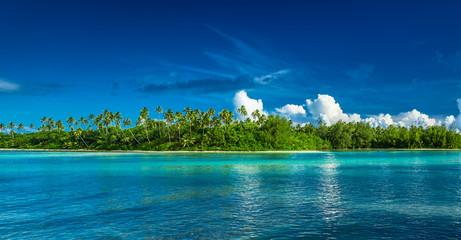 Tropical Rarotonga with palm trees and sandy beach, Cook Islands Wall mural