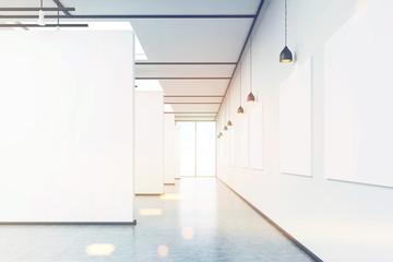 Art gallery corridor, toned