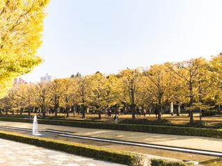 国営昭和記念公園 カナール