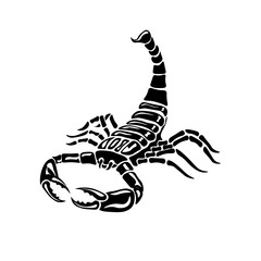 Aggressive black and white Scorpion for tattoos, zodiac sign.  illustration