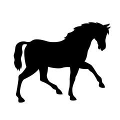 horse vector illustration black silhouette