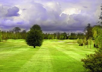 8th Hole at Mount Wolseley Golf Club