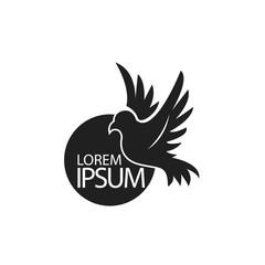Bird Icon or Logo Template