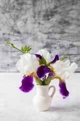 Violet iris flower on grey background. Selective focus