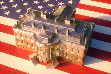 Wall Mural - White House On USA Flag