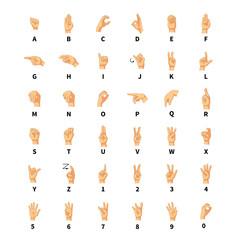 Sign language interpreter, latin alphabet signs on white