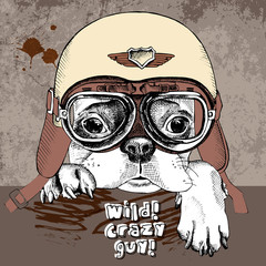 Poster with portrait of a French bulldog in retro motorcycle helmet. Vector illustration.