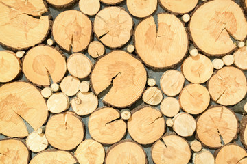 background of sawn logs