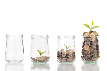 coins and plant in bottle, Business investment growth and saving