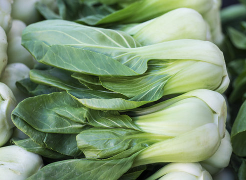 Bok Choy Stacked in a Market