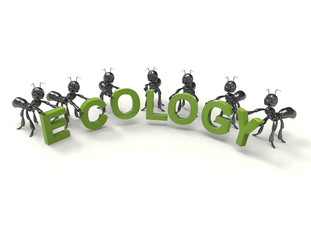 Ecology 3d word concept