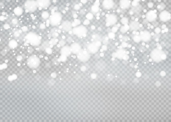 Winter with snow in transparent background