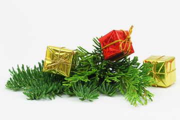 Miniature red and golden gift boxes on fresh pine with copy space