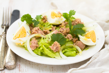 frsh salad with tuna and boiled egg on white plate