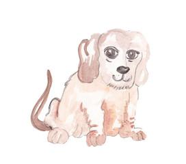 watercolor beautiful dog