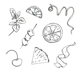 hand drawn set of graphic garnish elements fruits and berries on white background