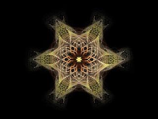 Computer fractal illustration of mesh rope flower on black background