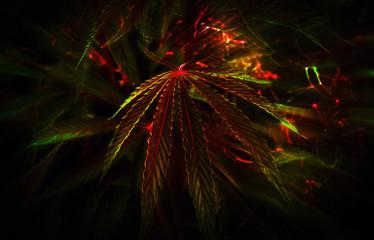 cannabis background. marijuana club.