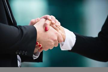 Handshake. Cordial business handshake