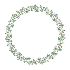 Wreath border frame with summer herbs, meadow flowers. Watercolor hand painting illustration on isolate white background.