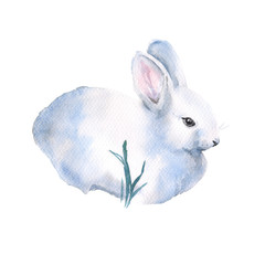 White rabbit. Insulated. The day of Holy Easter. watercolor illu