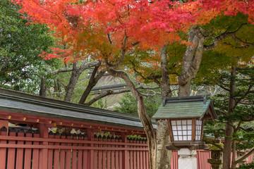 参道の秋景色