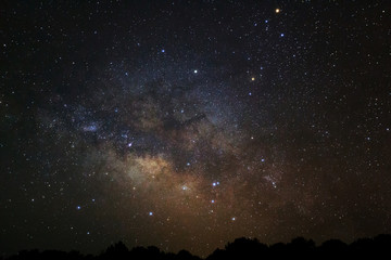 Milky Way Galaxy and Silhouette of Tree. Long exposure photograp