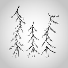 Fir-tree icon isolated