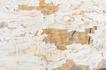 Spoed Foto op Canvas Wereldkaart wood grunge background
