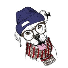 Vector hand drawn portrait of cozy winter dog. Pit bull wearing knitted scarf, beanie and hipster glasses.