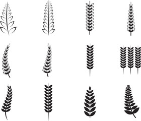 Various ferns icons
