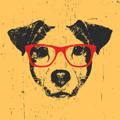 Portrait of Jack Russell with glasses. Hand-drawn illustration. T-shirt design. Vector