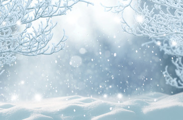 Winter Christmas background.Merry Christmas and happy New Year