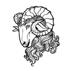 Side view of a ram head with big twisted horns. Intricate hand drawing. Tattoo design. Black and white sketch isolated on white background. EPS10 vector illustration.