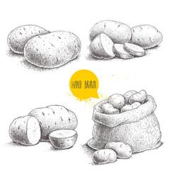 Hand drawn sketch style set illustration of ripe potatoes. Eco food vintage vector illustration