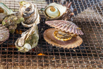 Fresh Oyster and scallop grill.