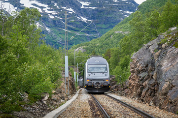 Flamsbana railway train arriving at small rural station, Norway.