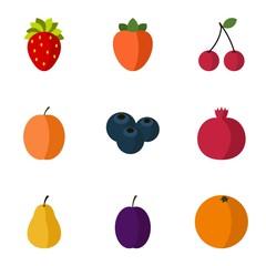 Fresh fruit icons set. Flat illustration of 9 fresh fruit vector icons for web