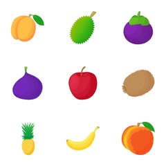 Types of fruit icons set. Cartoon illustration of 9 types of fruit vector icons for web