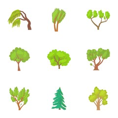 Woody plants icons set. Cartoon illustration of 9 woody plants vector icons for web