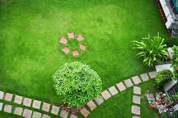 top view of garden