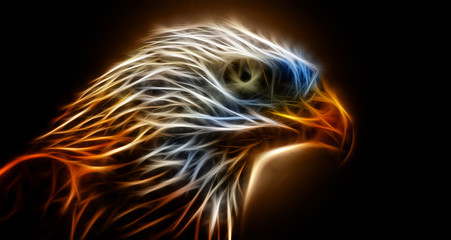 Abstract image eagle dark retro color wallpaper background flame illustration stock